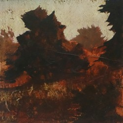 Merrick Belyea, Bellarine Trees 1, oil on board, 30 x 30cm