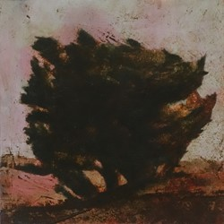 Merrick Belyea, Bellarine Trees 2, oil on board, 30 x 30cm