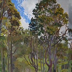 Jane Martin, Margaret River Bush Block, 2002, oil on board, 60 x 99cm