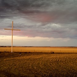 Brad Rimmer, Nungarin Rd Paddock #1 Summer 2014, photograph, 100 x 134cm, ed. 3