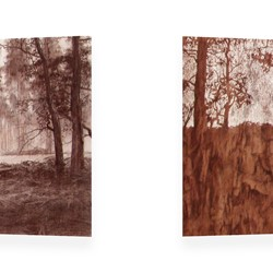 Tony Windberg, Harvest Red, 2012, conte crayon, charcoal, resins on 2 flat mdf structures, each panel, 50 x 160 x 5cm