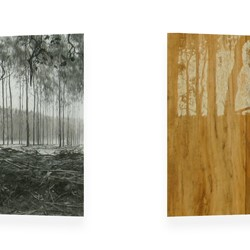 Tony Windberg, Harvest Gold, 2012, charcoal, resins on 2 flat mdf structures, each panel 50 x 160 x 5cm