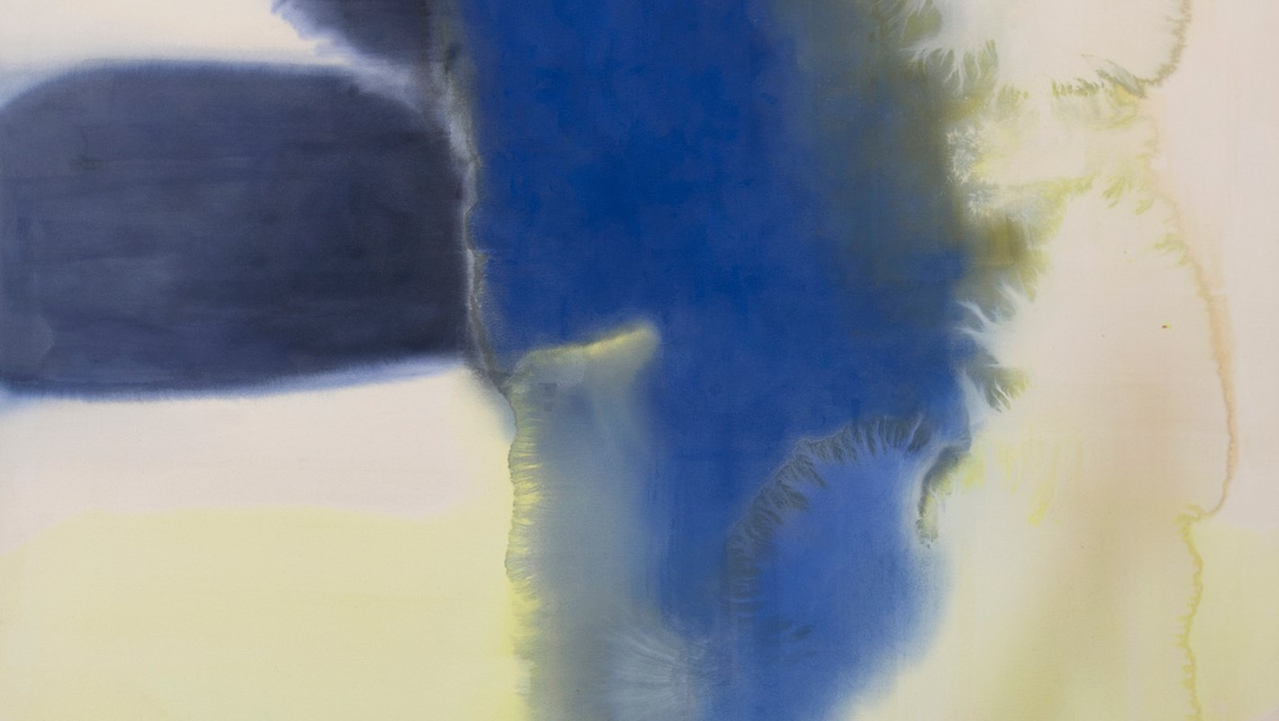 Penny Coss, Dark Expanse Over an Undefined Field, 2015, acrylic on canvas, 166 x 178cm
