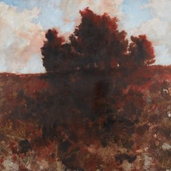 Merrick Belyea, Tree on a Hill, Nanga Brook Road, 2019, oil on board, 122 x 122cm