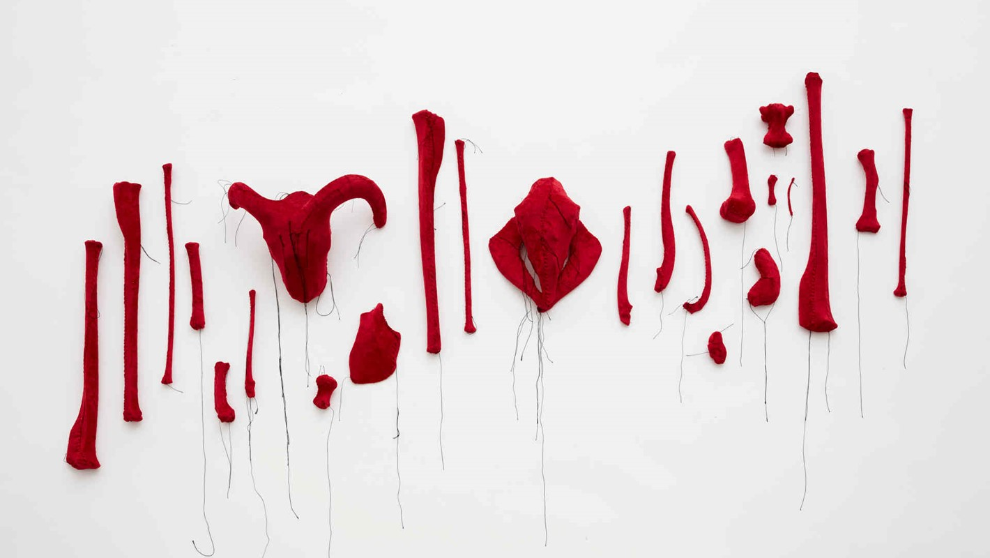 Olga Cironis, Seeing Red 1999, animal bones, velvet, dimensions variable. Photo Robert Frith.